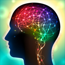 Memory and Focus Ingredients